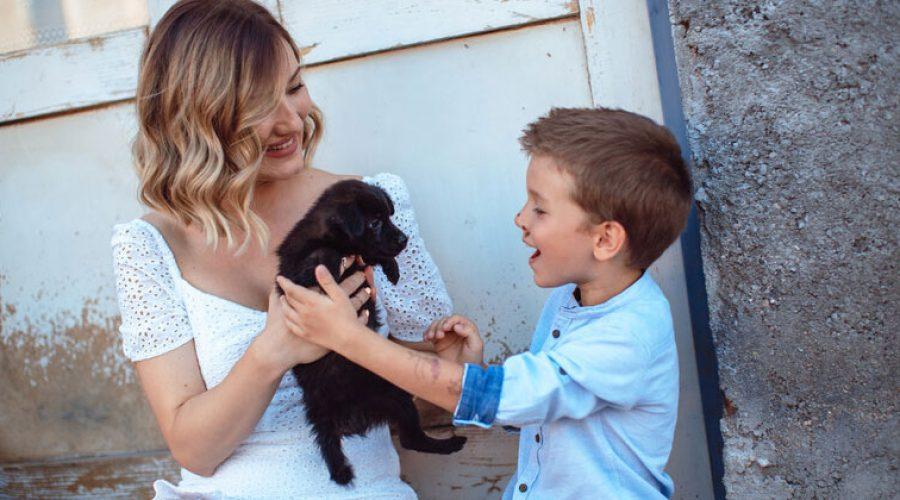 Why Is My Dog So Nervous Around Children?