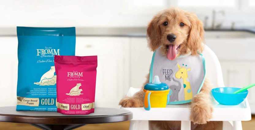 6 Pet Food Brands That Are Family Owned & Use Local Ingredients